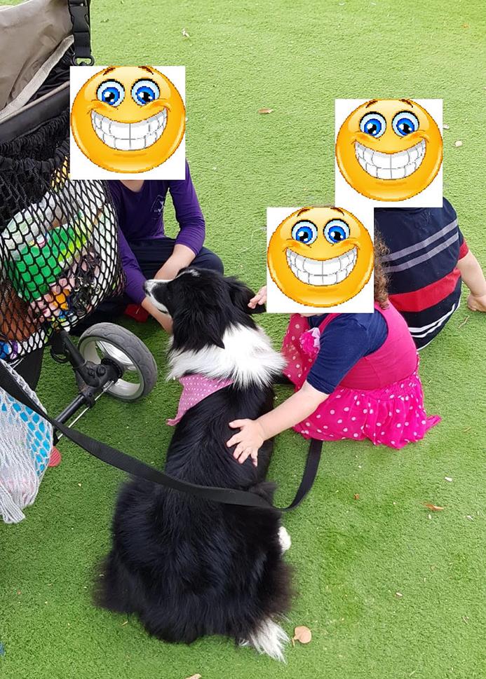 אילוף כלבים לילדים